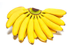 of small bananas. Stock Photo