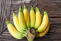 Butch of small bananas on old wood table Royalty Free Stock Photo