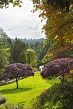 Butchard-garden on island Vancouver in Canada Royalty Free Stock Image
