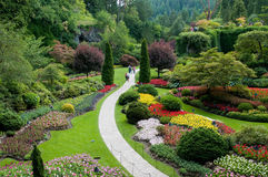 Butchart Gärten - Ansicht des versunkenen Gartens Stockfoto
