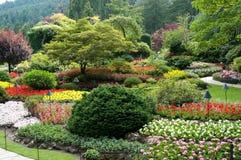Butchart Gardens. The famous Butchart Gardens at Victoria, B.C stock photos