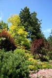 Butchart gardens, British Columbia, Canada Stock Images