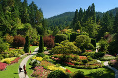 Butchart Gardens, Victoria BC Stock Images