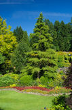 Butchart Gardens, Victoria BC Royalty Free Stock Photography