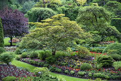 Butchart Gardens in Victouria B C Royalty Free Stock Photos