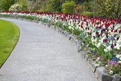 Butchart-Garten-Bürgersteig gezeichnet mit Tulpen lizenzfreies stockfoto