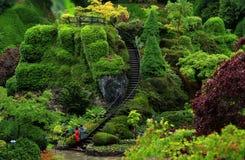 Butchart trädgårdar i den regniga dagen arkivbilder