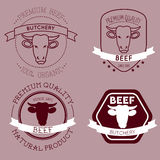 Butcher cow head labels Stock Image