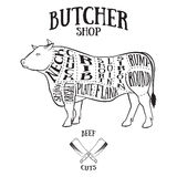 Butcher cuts scheme of beef. Hand-drawn illustration of vintage style Stock Photo