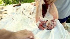 Butcher cutting back part of lamb stock footage