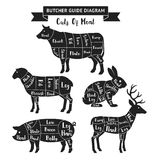 Butcher guide cuts of meat diagram. Vector illustrations Royalty Free Stock Image