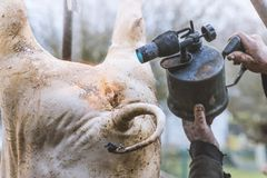 Butcher handles the slaughtered pig with blowtorch, hair removal, hang on a tripod, preparation to cutting, Ukraine. Butcher handles the slaughtered pig with Stock Image