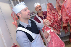 Butcher hanging up side animal Royalty Free Stock Image