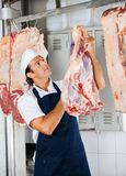 Butcher Looking At Stamp On Raw Meat Royalty Free Stock Images