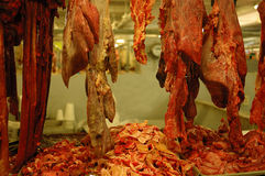 Butcher market merida. Beef, butcher market merida mexico Stock Photography