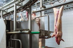 Butcher in meat industry interior Royalty Free Stock Photos