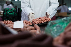 Butcher packing raw sausages. Mid section of butcher packing raw sausages at meat factory Stock Photography