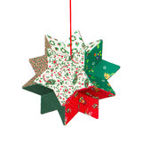 Butcher's broom, christmas decoration, isolated Stock Image