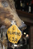 Butcher's salami sign with hog's head - Sienna, Italy. A hogs head with a hanging salami sign in a butcher's window in Sienna, Italy Royalty Free Stock Images