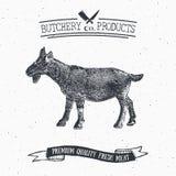 Butcher Shop vintage emblem goat meat products, butchery Logo template retro style. Vintage Design for Logotype, Label, Badge and Stock Photo