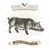 Butcher Shop vintage emblem pork meat products, butchery Logo template retro style. Vintage Design for Logotype, Label, Badge Royalty Free Stock Photography