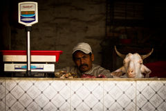 A butcher sits next to a goat's head and scales, Kathmandu, Nepal Royalty Free Stock Images