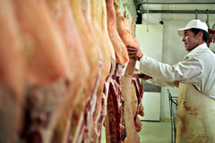 Butcher at work Stock Image