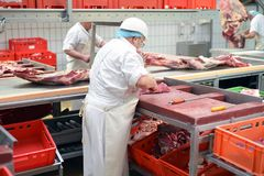 Butcher works in a slaughterhouse and cuts freshly slaughtered m. Eat beef and pork for sale and further processing as sausage - group workers royalty free stock image