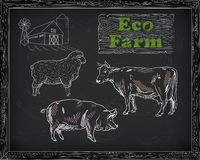 Butchering beef diagram, pork, lamb and farm Royalty Free Stock Image
