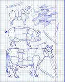 Butchering beef diagram, pork, lamb and knife Royalty Free Stock Photos