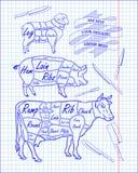 Butchering beef diagram, pork, lamb and knife Stock Images