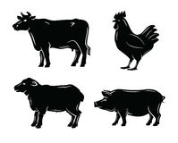 Butchers guide symbols Stock Images