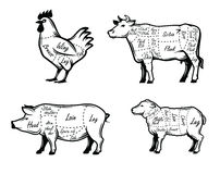 Butchers guide symbols Royalty Free Stock Images