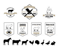 Butchery Logos, Labels, Farm Animals And Design Elements Royalty Free Stock Image