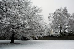Bute park. Cardiff Bute park covered by snow, horizontally framed picture stock photos