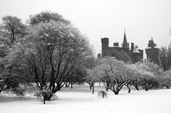 Bute park, Cardiff. Cardiff's Bute park covered under snow with castle royalty free stock image