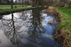 Bute Park Royalty Free Stock Image