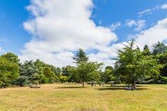 Bute park i Taff rzeka, Cardiff, Walia, UK Zdjęcie Stock