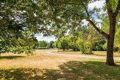 Bute park i Taff rzeka, Cardiff, Walia, UK Obrazy Royalty Free
