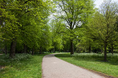 Bute Park. The parks of Cardiff City Centre South Wales - Bute Park Stock Images