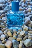 Buteleczka puma gatunku woń w błękitnym kolorze na małych dennych skałach obrazy stock