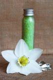 butelek kwiatu soli denny biel Zdjęcia Stock