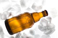 Buteljera av öl arkivbild