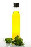 Buteljera av olivolja med cilantro på vitbakgrund Fotografering för Bildbyråer