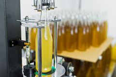 Buteljera fabriken - buteljera linje f?r ?l f?r att bearbeta och att buteljera ?l in i flaskor royaltyfria foton