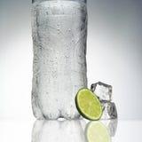 Buteljera mineralvatten royaltyfri foto