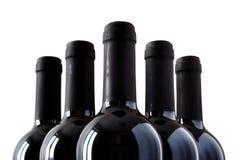 Buteljerar av fin italiensk rött vin royaltyfri bild