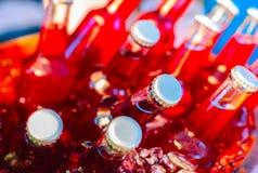Buteljerar av fruktfruktsaft Royaltyfri Fotografi
