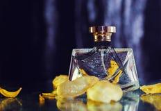 butelkę perfum siatek ciągnącego wektor ilustracyjny Fotografia Royalty Free