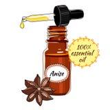Butelka Anyżowy istotny olej z wkraplaczem Zdjęcia Stock
